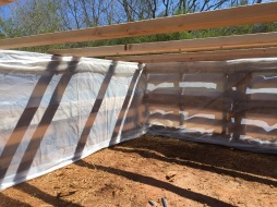 Construction of a 6 pallet shelter for a larger group of pigs.