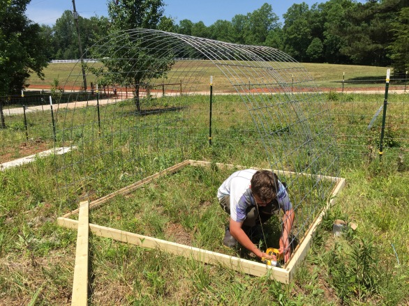 Base for cattle panel hoop shelter.